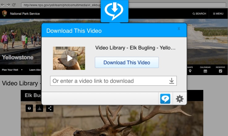 RealPlayer with RealTimes - EveryDownload