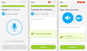 duolingo on pc Screenshot