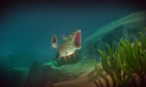 Feed and Grow: Fish download Screenshot
